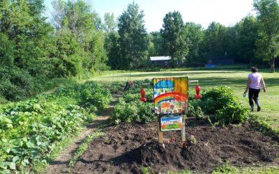 Les camps Tim Hortons dans la communauté – Partie 2