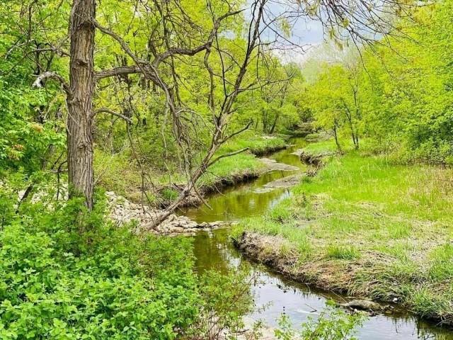 Une vue du Bunn's Creek Trail