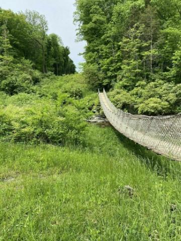 Pont suspendu à Caesar State Park
