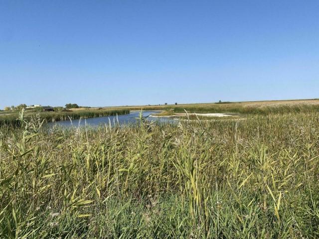 Une vue du Oak Hammock Marsh